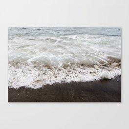 Brown Beach Canvas Print