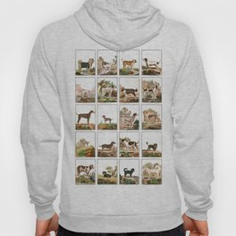 Dogs In Vintage Style Hoody