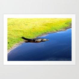Relaxing Alligator Art Print