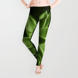 Greenery succulent Echeveria agavoides flower Leggings