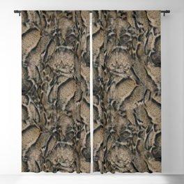 Clouded Leopard Fur Print Blackout Curtain