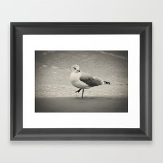 Beach Bird Framed Art Print