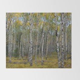 Trembling Aspen's in the Fall, Jasper National Park Throw Blanket
