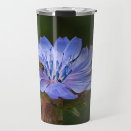 Chicory Flower with a Hoverfly Travel Mug