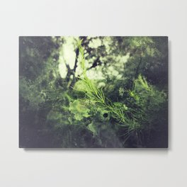 Asparagus Green Metal Print
