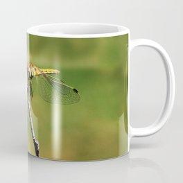 Dragonfly on a stick Coffee Mug