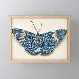 Firecracker Butterfly Framed Mini Art Print