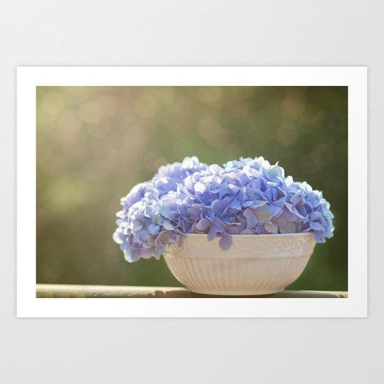 Hydrangea Bowl Art Print