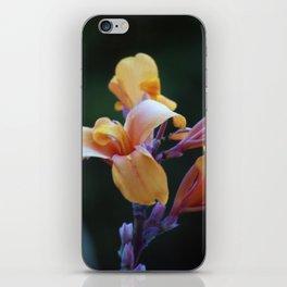 Longwood Gardens - Spring Series 128 iPhone Skin