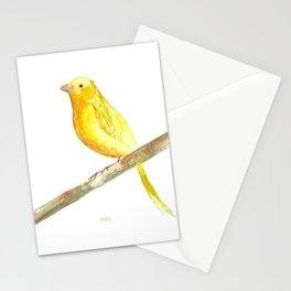 Aquarela Canarinho Stationery Cards