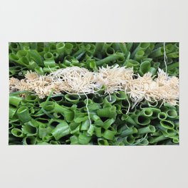Green Onions are beautiful! Rug