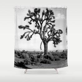 Joshua Tree, Mojave Desert 1904 Shower Curtain