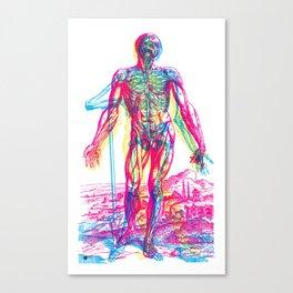 Andreae Vesalii RGB 2 Canvas Print
