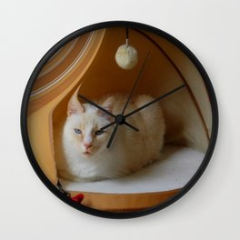 My cat is my zen master Wall Clock