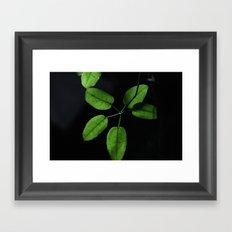 Black on green Framed Art Print