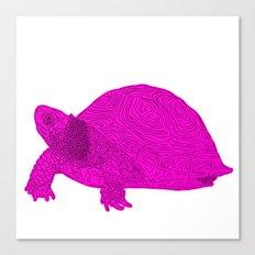 Turtle Illustration Pink Canvas Print