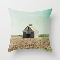 american beauty Throw Pillows featuring American Beauty Vol 21 by Farmhouse Chic