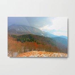 Landscape with snow Metal Print