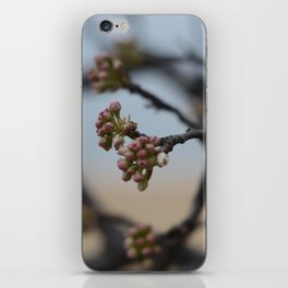 New Flowers iPhone Skin