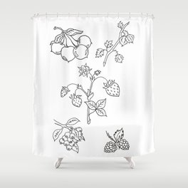 Fruit Variety Study Design — Mixed Fruits Illustration — Strawberry and other Fruits Design Shower Curtain