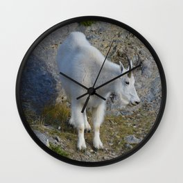 Mountain goat in the Canadian Rocky Mountains Wall Clock