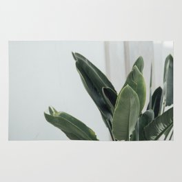 Botanical Leaves Rug
