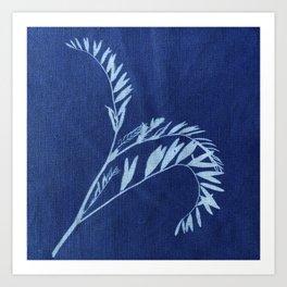Herbal Sunprint #2 Art Print