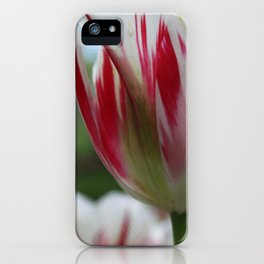 Painted Petals iPhone Case