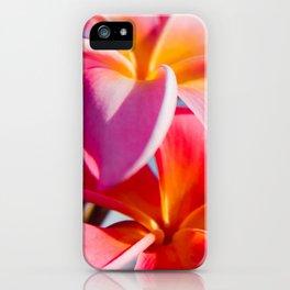 Pua Melia ke Aloha Keanae Dreams iPhone Case