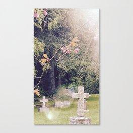 Cemetery, St. John's Anglican Church, Cobble Hill B.C. Canvas Print