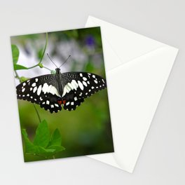 Butterfly Medium Stationery Cards
