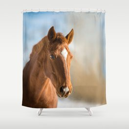 Brown Horse Winter Sky Shower Curtain