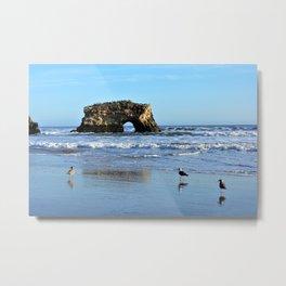 Seagulls at Natural Bridges Metal Print