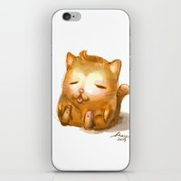 my mad fat diary iPhone & iPod Skins featuring Fat Cat by Cat in the Box