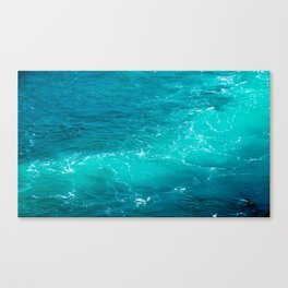 H2Oh, that's cold! Canvas Print