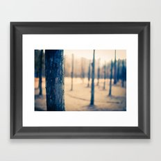 Nami Island Forest Framed Art Print