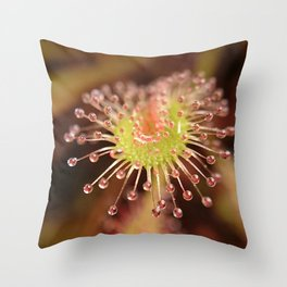 Alone in the light Throw Pillow