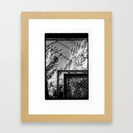 Terrace & Vines Framed Art Print