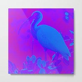 Purple White Ibis Metal Print