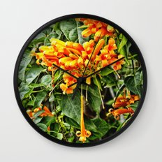 Spectacular orange trumpet flower Wall Clock