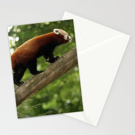 Happy Red Panda. Stationery Cards