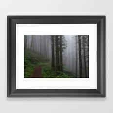 Forest of Fog Framed Art Print