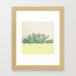 Succulent Dip II Framed Art Print
