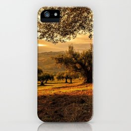Olive Groves Along the Mountainside iPhone Case