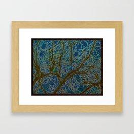 Jeweled Birds In Winter Tree Framed Art Print