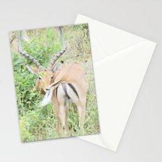 Gazelle Stationery Cards