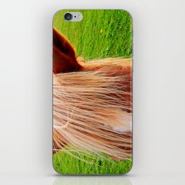 Beautiful Blond Mare iPhone Skin