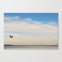 FREE SPIRITS HAVE TO SOAR ♡ Canvas Print