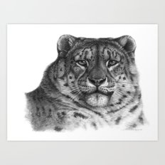 Snow Leopard G078 Art Print
