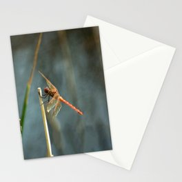 A Dragon Named George Stationery Cards